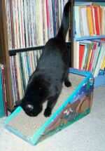 Jolie using the Cosmic Alpine Scratcher